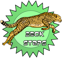 Speed Award, 250K steps