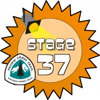 Stage 37